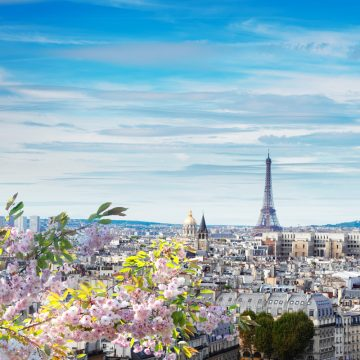 paris picture 1