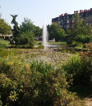 NBS - An urban park in the city with a constructed mini lake and water fountain